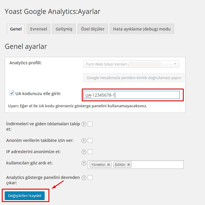 wordpress google analytics (3)