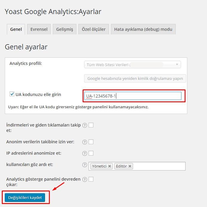 wordpress google analytics (3)
