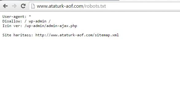 robot-txt