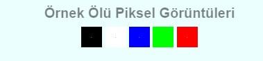 ölü piksel nasıl anlaşılır