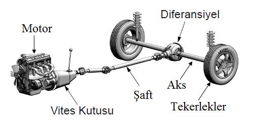 aktarma-organları