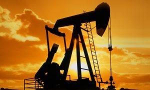 petrol nasıl oluşur