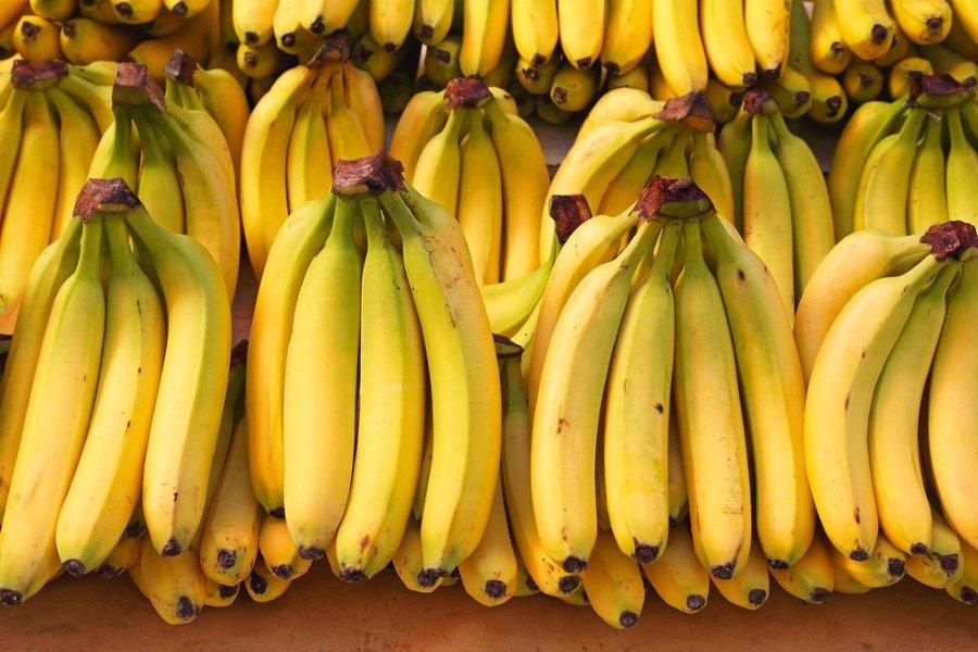 Muz Nedir Nasıl Bir Meyvedir çeşitleri Nelerdir Nerelerde